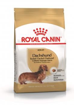 Royal Canin Dachshund для взрослой таксы с 10 мес.