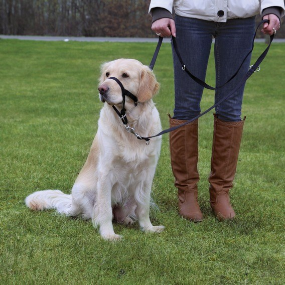Trixie Намордник тренировочный 21-26 см (размер морды max 33 см)